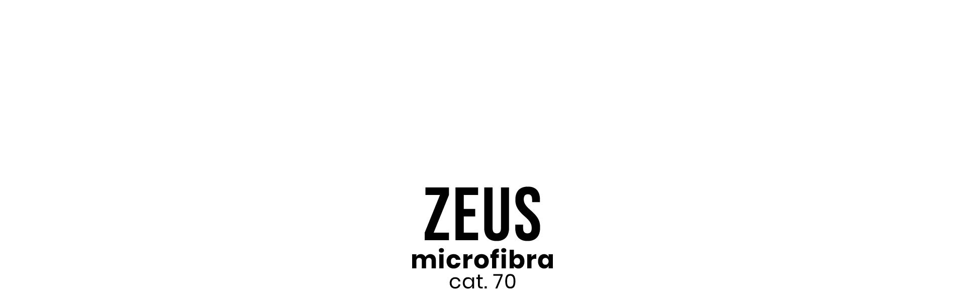 zeus - Copia